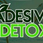 adesivo-detox-150x150 Como Fazer a Dieta Detox?